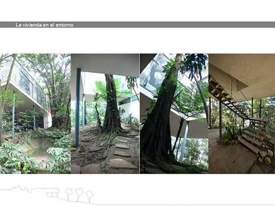 casa de vidrio-lina bo bardi- Jesús Alberto Benítez Fornell-stepienybarno 2