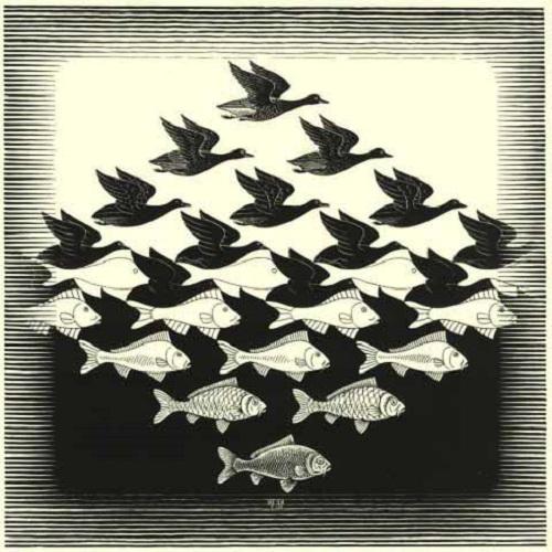 2. Maurits Cornelius Escher-stepienybarno