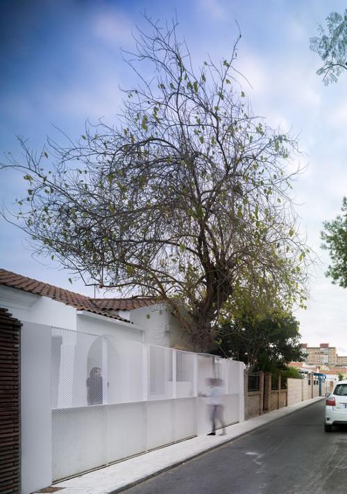 stepienybarno-proyecto-del-dia-casa-en-una-botella-Iñaki-Pérez-de-la-Fuente-Cristina-García-Baez-jesus-granada-el-pais