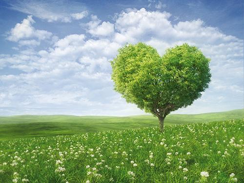 stepienybarno-blog-stepien-y-barno-aislamiento-y-sostenibilidad