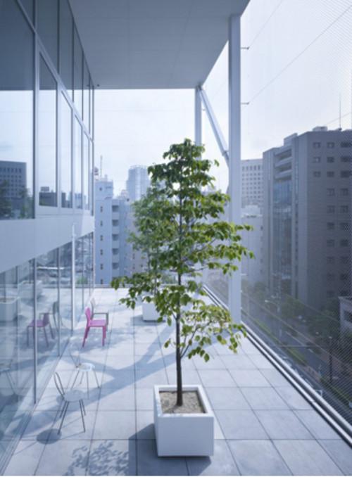 stepienybarno-proyecto-del-dia-Kazuyo Sejima-Metalocus-6