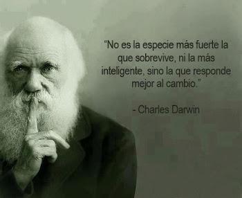 El cambio. Darwin - stepienybarno