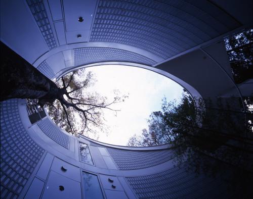 stepienybarno-blog-stepien-y-barno-arquitectura-plataforma-casas-arquitectos-shigeru-ban