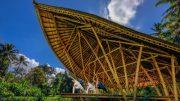 stepienybarno-stepien-y-barno-arquitectura-ProyectoDelDia-ibuku-plataforma-arquitectura.-2jpg