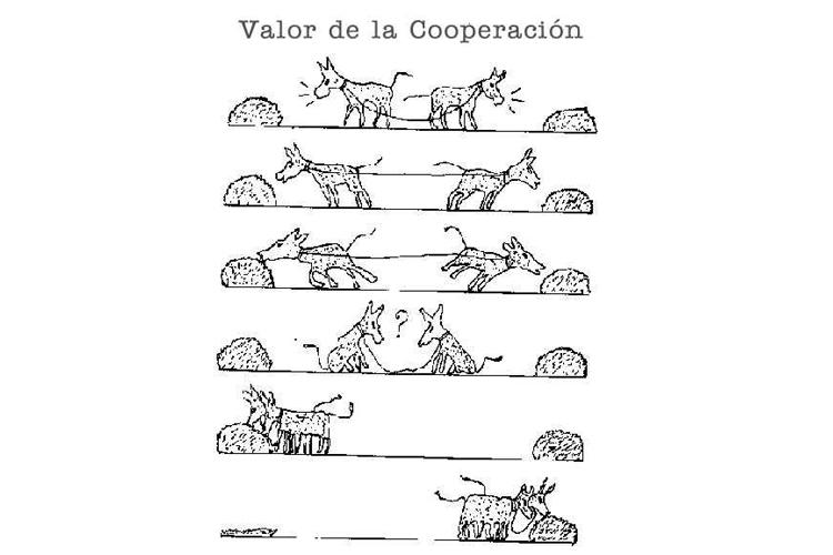 cooperacion STEPIENYBARNO LA CIUDAD VIVA LACIUDADVIVA