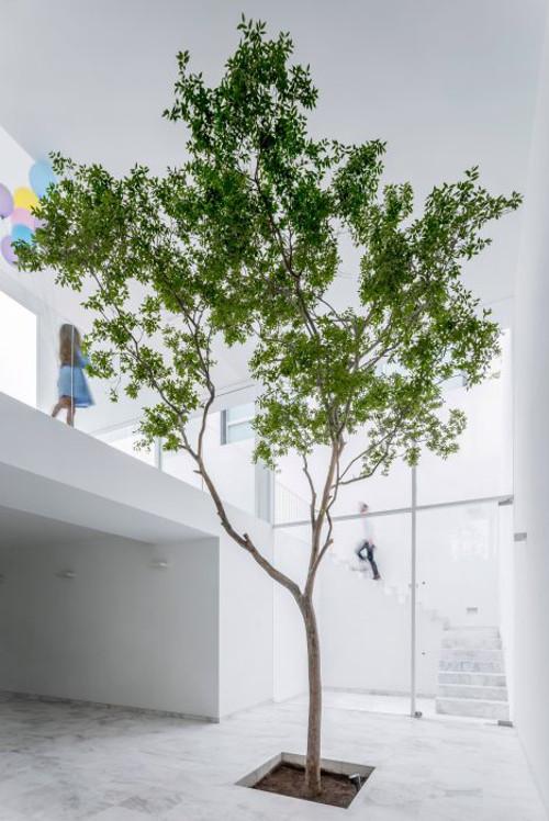 stepienybarno-stepien-y-barno-proyectodeldía-blog-more-with-less-design-abraham-cota-paredes-3